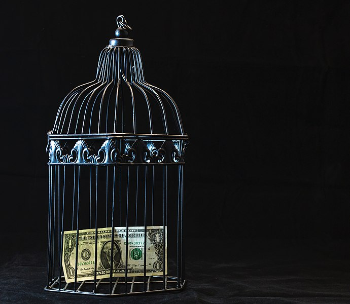 File:Black Steel Pet Cage With One Dollar (43114564870).jpg