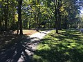 Blendon Woods Metro Park October 2018 4.jpg