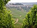 Blick über die Weinberge - panoramio (2).jpg