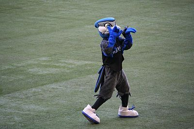 A mascot with a blue jay reminiscent head, and a human body, appears on a baseball diamond.