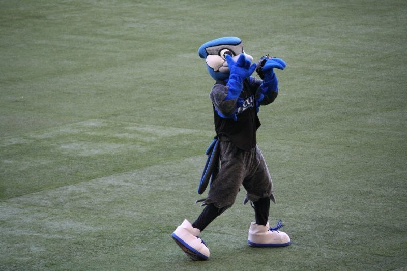 Blue Jays Mascot