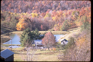 Blue Ridge Parkway BLRI9238.jpg