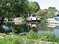 Boats moored on the N bank of the Stour - geograph.org.uk - 459889.jpg