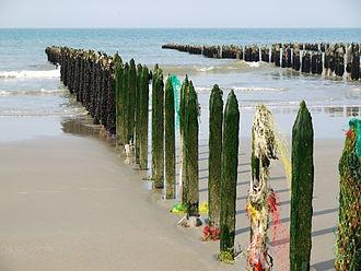Pas-de-Calais - Image: Bouchot baie de Wissant P1030356