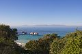 Boulders Beach Penguin Colony 4.jpg