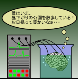 Brain in a vat (ja)