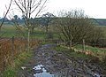Bridleway between Wardle and Shore - geograph.org.uk - 377823.jpg