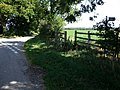 Bridleway near Dalby - geograph.org.uk - 551918.jpg