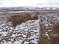 Bridleway on Brownley Hill - geograph.org.uk - 1704489.jpg