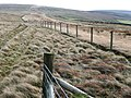 Bridleway towards Mynydd Coety - geograph.org.uk - 676579.jpg