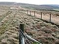 Bridleway towards Mynydd Coety - geograph.org.uk - 676579.jpg