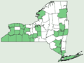 Bromus arvensis NY-dist-map.png
