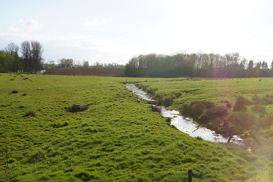 Sart-Dames-Avelines,  Belgium: A river font of the river Thyle close to the Namur Road N93
