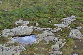Sirdal - Landscape of Sirdal