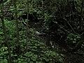 Bubovice-Srbsko - panoramio (59).jpg