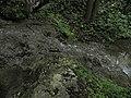 Bubovice-Srbsko - panoramio (90).jpg