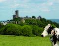 Burg Greifenstein - Ansicht von Süden.jpg