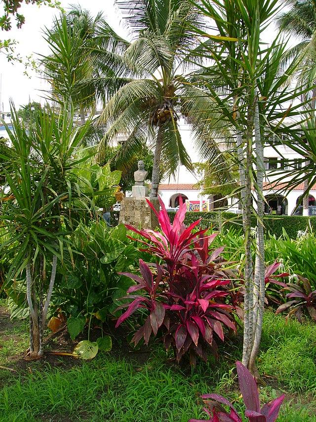Jardín de Alvaro Obregón