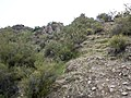 Butcher Jones Trail - Mt. Pinter Loop Trail, Saguaro Lake - panoramio (107).jpg