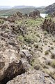 Butcher Jones Trail to Pinter's Point Loop, Tonto National Park, Saguaro Lake, Ft. McDowell, AZ - panoramio (42).jpg