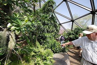 Monsanto Insectarium - Inside the insectarium