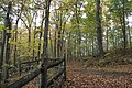 Buttermilk Falls - panoramio (9).jpg