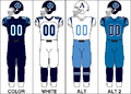 CFL Jersey TOR 2009.png
