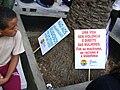 Caminhada lésbica 2009 sp 10.jpg