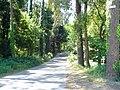 Caminho rural.JPG