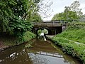 Canal Bridge No 45, Macclesfield canal.jpg