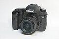Canon EOS 7D 1.JPG