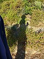 Cap Corse - along the D253-the wanderer's shadow - panoramio.jpg