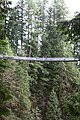 Capilano Suspension Bridge 2012 Winter (6992132905).jpg