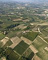 Castagnole delle Lanze, veduta aerea.jpg