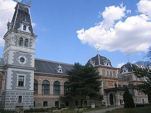 http://upload.wikimedia.org/wikipedia/commons/thumb/1/13/Castelul_de_la_Macea,_Arad.jpg/300px-Castelul_de_la_Macea,_Arad.jpg