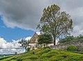 Castle of Marqueyssac 16.jpg