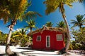 Catalina Island, La Romana, Dominican Republic. A typical bungalow nearby cost line, shaded with palm trees (1).jpg