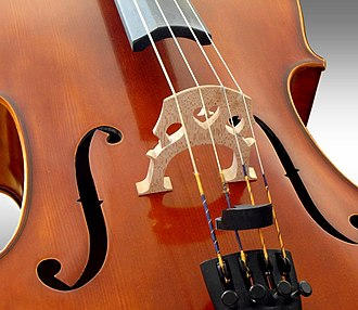 Cello - The bridge of a cello, with a mute (the mute is not in use)