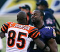 Chad Johnson and Bart Scott.jpg