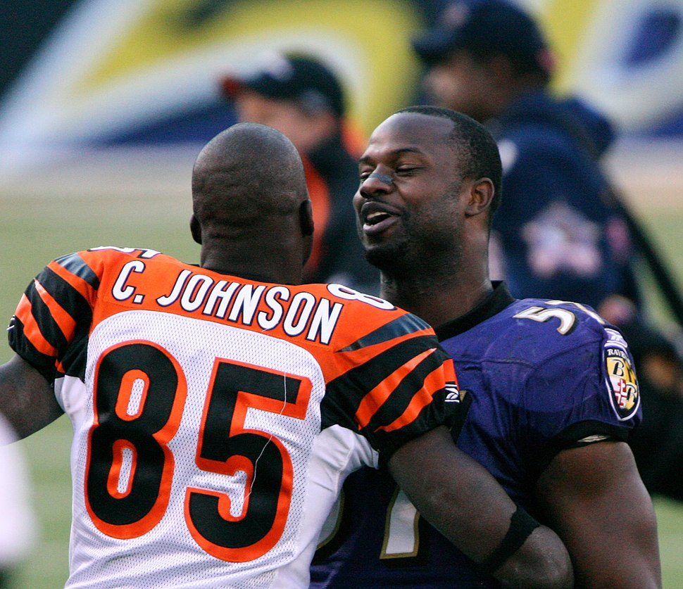 Chad Johnson and Bart Scott