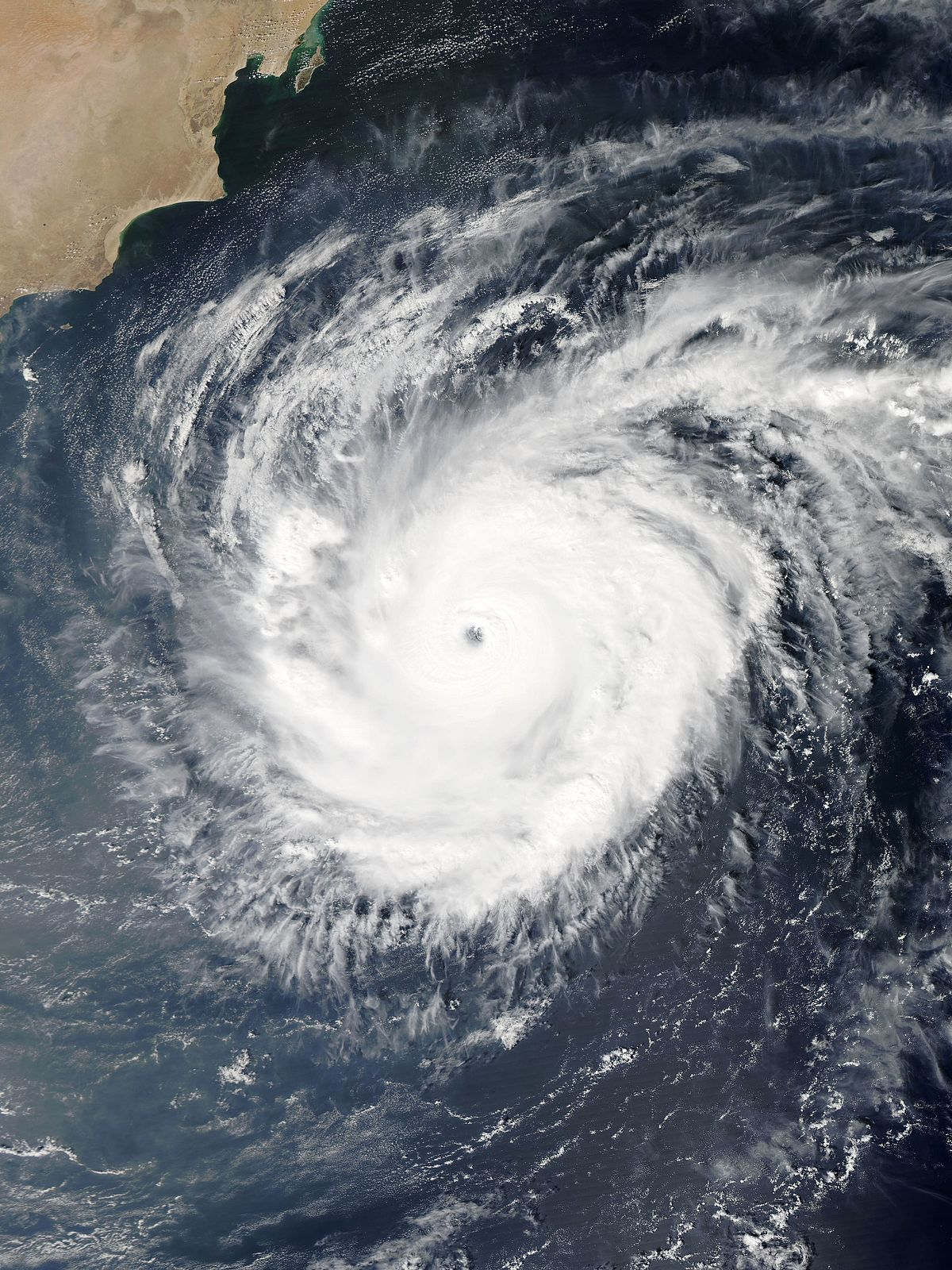 Nisha cyclone in india media essay
