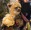 Cheetah Person (11030100035).jpg