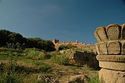 Chellah interior hill