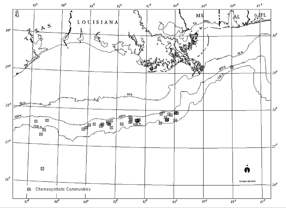 Chemosynthetic communities in the Gulf of Mexico 2000