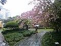 Chongchuan, Nantong, Jiangsu, China - panoramio (11).jpg