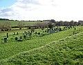 Churchyard, St Andrew's Church - geograph.org.uk - 1044272.jpg