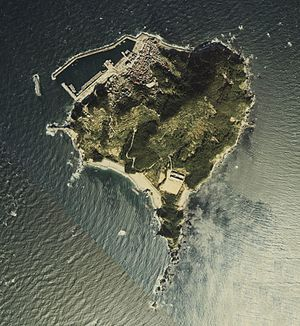 Kami-shima - National Land Image Information (Color Aerial Photographs), Ministry of Land, Infrastructure, Transport and Tourism.