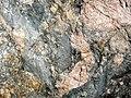 Clast-rich mixtite (Coleman Member, Gowganda Formation, Paleoproterozoic, ~2.3 Ga; Percival Lake roadcut, Ontario, Canada) 23 (47674242612).jpg