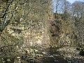 Cliffs above the East Allen - geograph.org.uk - 408316.jpg