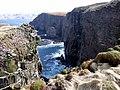 Cliffs at Handa - geograph.org.uk - 604701.jpg